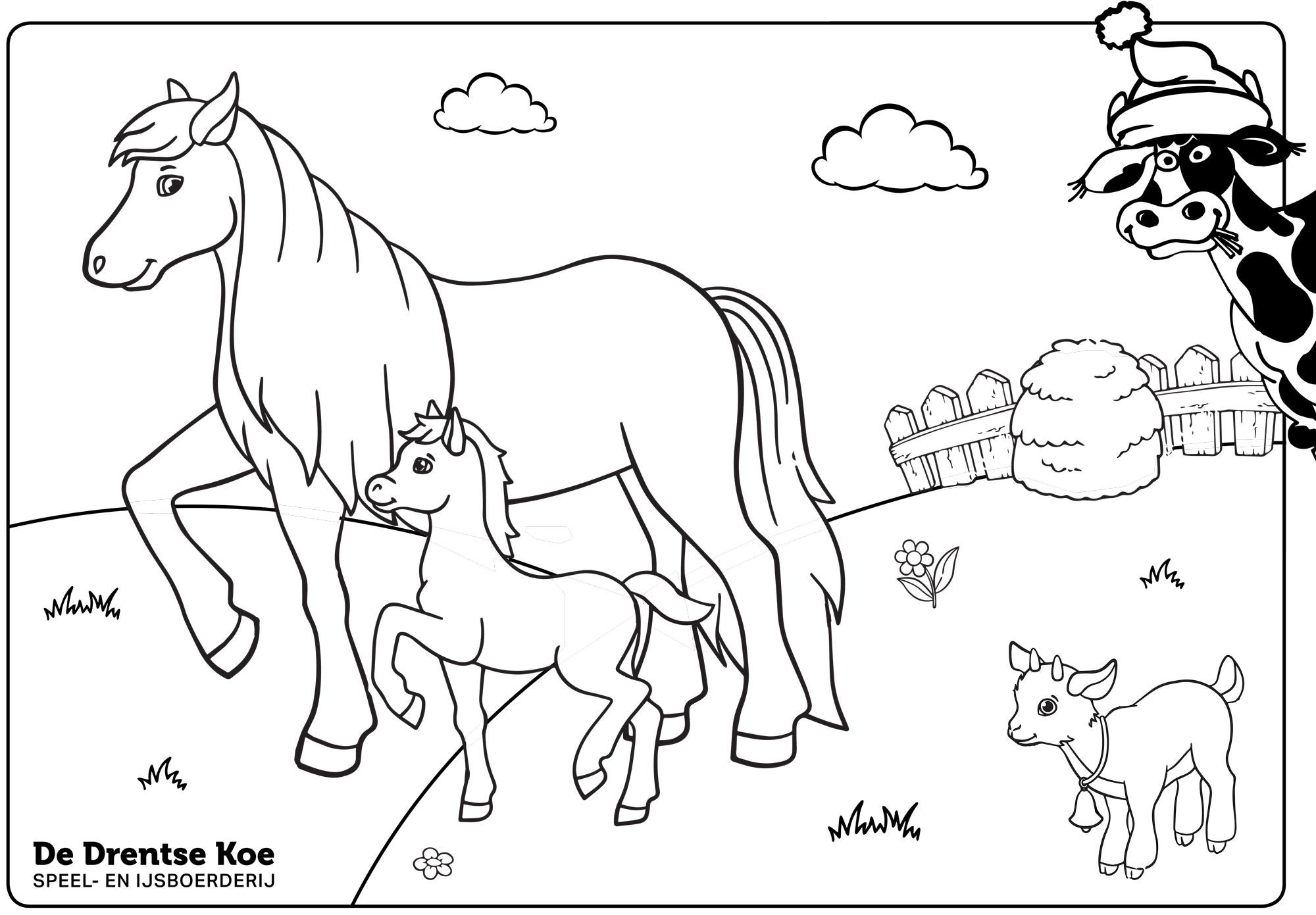 Kleurplaat De Drentse Koe pony